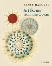 : ernst haeckel, art forms from the ocean