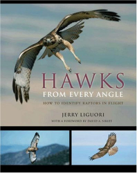 Jerry Liguori: Hawks from Every Angle: How to Identify Raptors In Flight