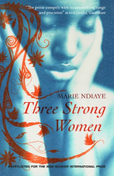 Marie NDiaye: Three Strong Women
