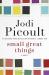 Jodi Picoult: Small Great Things: A Novel