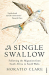 Horatio Clare: A Single Swallow: Following An Epic Journey From South Africa To South Wales