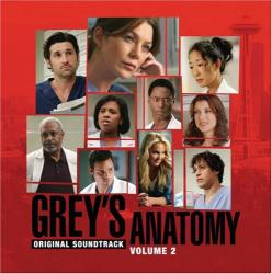 Grey's Anatomy 2 -