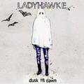 Ladyhawke - Dusk Till Dawn (Pascal Gabriel Radio Mix)