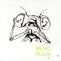 Meho Plaza - Your Future Looks Bright