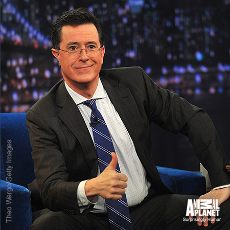 Stephen-colbert-late-night-450