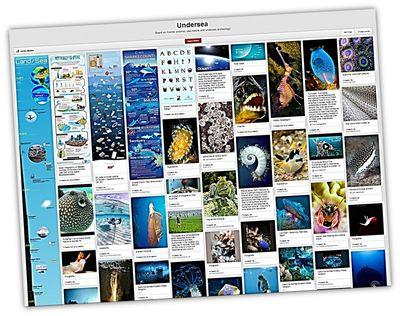 Una iniciativa muy útil fue Undersea, un tablero o mural interactivo en el que se ubicaron imágenes y otros recursos asociados al mar