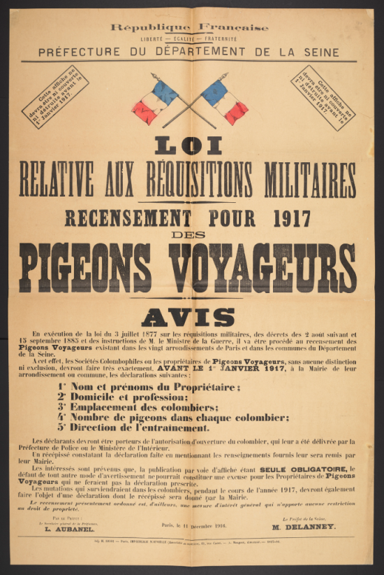 5. Pigeon requisition