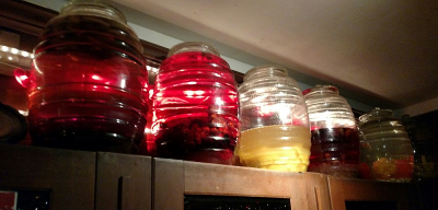Vodka infusions in all their liquid glory.