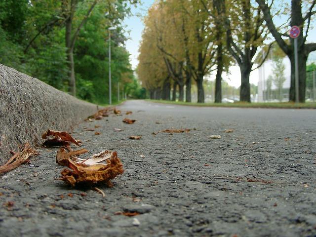 Road-193659_640