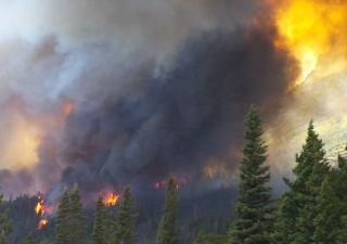 Glacier Park Fire