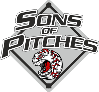 SONS OF PITCHES LOGO JPG