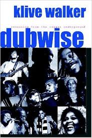 Dubwise book cover